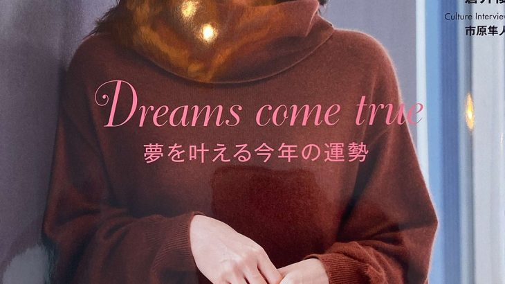 フリーマガジンPoco'ce1月号!布ナプキン温活法があつい!!